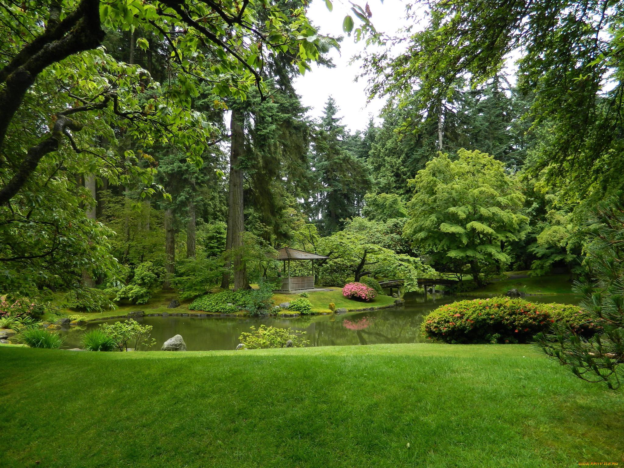 Природа парк картинки